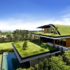Зелена архитектура