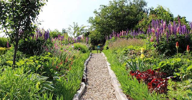 вълшебната градина
