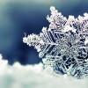 Снежен фолклор