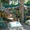 Живите динозаври