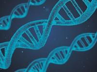 Уотсън, Крик и тяхното ДНК